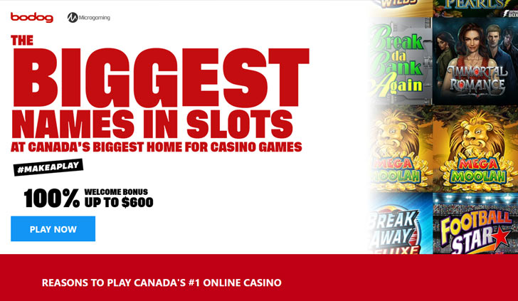 Bodog Casino Website - Mobile